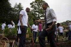奥巴马现身白宫菜园 未动手帮忙被批光说不练