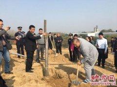 男子偷倒渣土破坏植被 判2年罚3万还要种16亩树