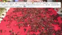 天了噜! 郑州龙虾店开业 邀400斤小龙虾一起走红毯