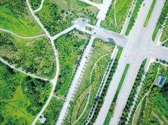 郑州新建市区绿地树种不少于30种:既生机盎然 又色彩斑斓
