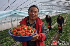 投资产业科技园增加村民收入