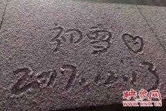 下雪了!郑州迎今年冬天首场雪