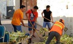区委统战部全员参与城市大清洗活动