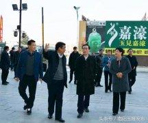 副省长戴柏华带队观摩镇平玉文化产业园区