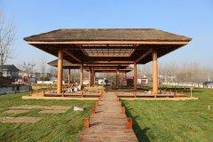 贾湖文化保护开发再结硕果