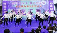 西华县红花镇举行首届文化艺术节