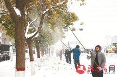 汝南县林业局 积极应对大雪冰冻天气