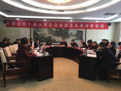 卫东代表团参加市十届人大五次会议