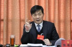 区委书记张书杰参加区十五届人大二次会议分团讨论