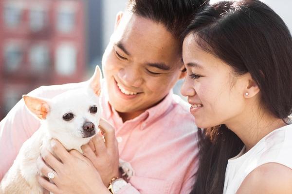 2018最具创意的订婚照 记得带上你的宠物狗出境