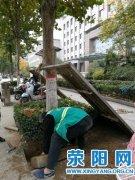 市园林中心开展树穴铺装专项清理活动