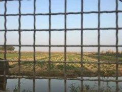洞庭湖围网困境:当地曾鼓励养殖 网围被拆渔民痛哭