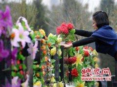 【故乡的新时代】初三墓前祭亲人 献花代替烧纸钱