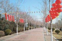 """红枫广场堤顶路搭起""""风车长廊""""喜迎新春"""