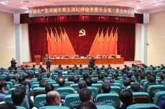 中国共产党项城市第五届纪律检查委员会第三次全体会议召开