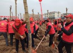 商城县食药监局参加学雷锋志愿服务暨义务植树活动