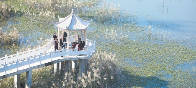 在阳光的沐浴下,居民坐在小亭子里谈笑风生。