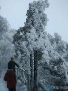 尧山景区惊现雪雪凇奇观 美如仙境