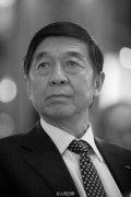 中国前驻法大使吴建民在武汉因车祸去世