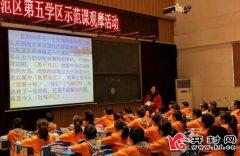 示范区第五学区举行示范课观摩活动