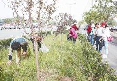 孟庄镇:整治环境  美化家园 - 今日辉县 - 辉县市政务动态
