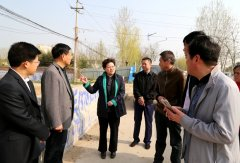 县长张颖波就环保工作进行现场办公