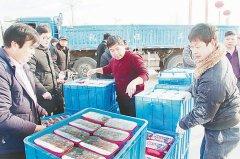 张村乡:拉长红薯粉条产业链 - 今日辉县 - 辉县市政务动态