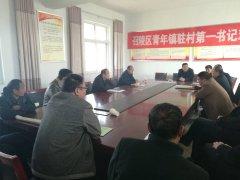 青年镇组织召开各村支部书记座谈会