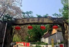 万亩槐林,十里飘香 相约中国.新密九里山槐花节