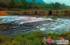 石家庄饮用水源保护区遭污染 河水变黑刺鼻