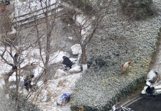 """别眨眼,今天一定不能错过郑州这场""""认真的雪"""",一错过看雪就到下个月了!"""