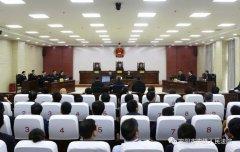 司法部原党组成员、政治部原主任卢恩光行贿、单位行贿案一审开庭