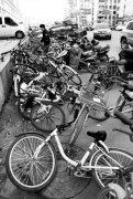 """河南省代表委员共谈""""最后一公里""""出行 能否制定河南共享单车管理条例?"""
