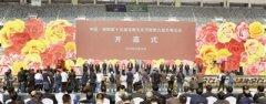 第十五届玉雕文化节暨第九届月季花会开幕