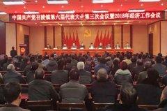 召陵镇召开中国共产党召陵镇第六届代表大会第三次会议暨2018年经济工作会