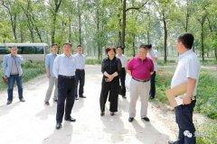西华县县长田庆杰调研国家级森林公园等项目谋划情况