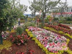 郑州第八届宿根花卉展开幕 5月27日前市民可免费参观