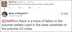 英国新版5镑钞票含动物脂肪 惹怒素食主义者