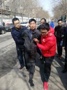 郑州警方抓获盗电动车团伙 23辆电动车等待主人认领