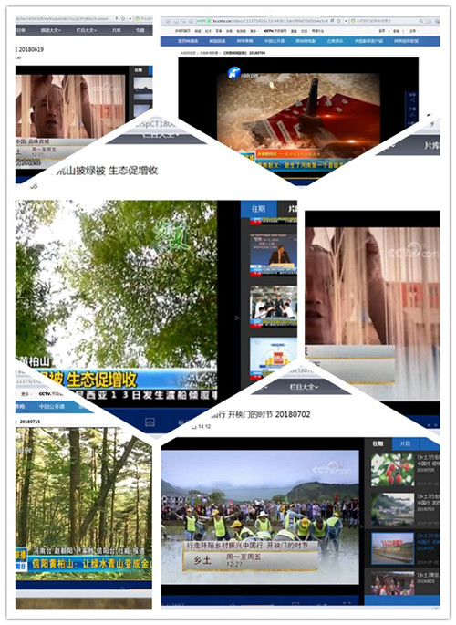 CCTV-13直播、CCTV-7专栏、《河南新闻联播》头条……商城新闻又双叒叕密集上榜啦