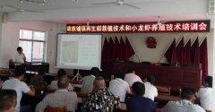 胡族铺镇召开再生稻栽植技术和小龙虾养殖技术培训会