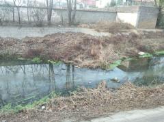 郑州这条河水臭了十几年 何时才能不臭?