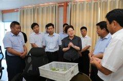 县长张颖波带队到太康县考察学习产业扶贫工作