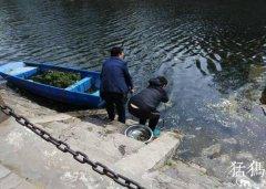 郑州市民金水河里捞泥鳅 能吃么?