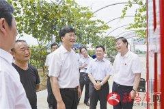 省委副书记王炯深入上蔡调研脱贫攻坚工作