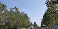 镇平县实施飞机防治杨树食叶害虫