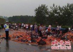 洛阳高速一货车侧翻西红柿遭哄抢 交警快速施救疏散人群