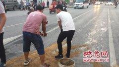 郑州一路面现大面积油污存安全隐患 公交人员及时清理