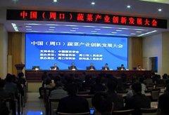 中国周口蔬菜产业创新发展大会在扶沟举行