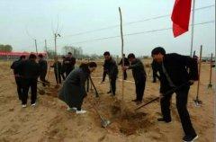 我县开展全民冬季义务植树活动